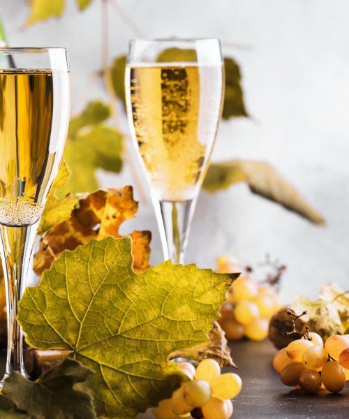 Veľké hodnotenie  šumivých vín